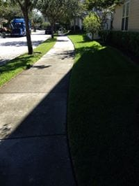 Sidewalk Cleaning Tampa