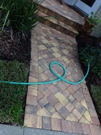 Paver and Walkway Cleaning Tampa