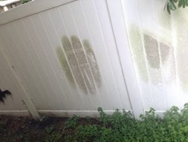 Vinyl Fence Cleaning Tampa